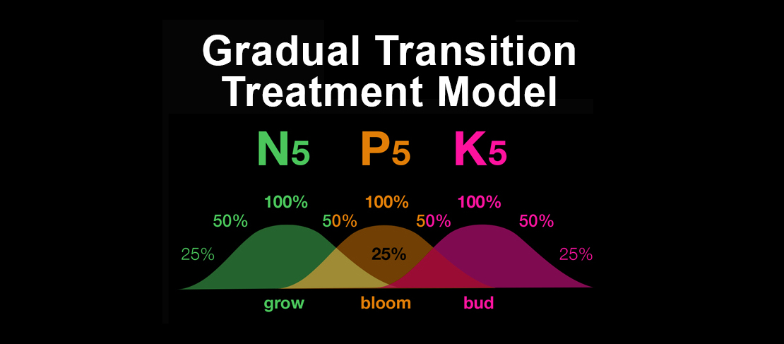 Big Blooms & Buds Gradual Transition Treatment Model